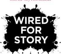 Wired for Story by Lisa Cron {Book Review}