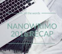 NaNoWriMo 2016 Recap